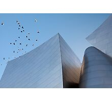 Walt Disney Concert Hall - Los Angeles California Photographic Print