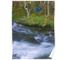 Rushing Stream and Creek Bank - Fall in Eastern Sierra California Poster