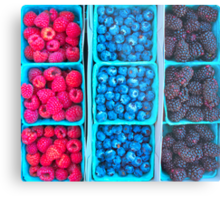 Farm Fresh Berries - Raspberries Blueberries Blackberies Metal Print