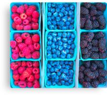 Farm Fresh Berries - Raspberries Blueberries Blackberies Canvas Print