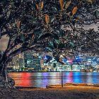 Balmain Tree by yolanda