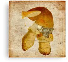 Mortal mushroom Canvas Print