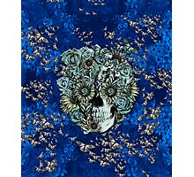 Royal Constant, floral butterfly skull Photographic Print