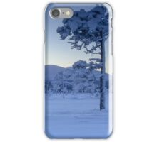 Cold winter day iPhone Case/Skin