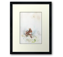 Squirrel and Fish Framed Print
