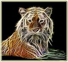 Fractilius TIGER by amira