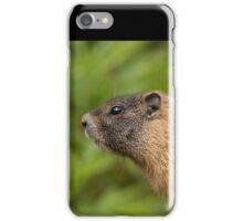 My Beautiful Fur iPhone Case/Skin