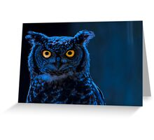 Moonlight Owl Greeting Card