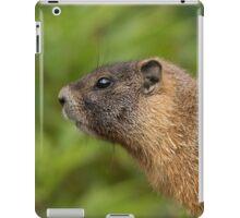 My Beautiful Fur iPad Case/Skin