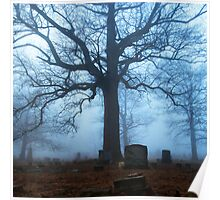 One Tree, Cemetery Study Poster