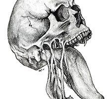 Skull by Natalie Holden
