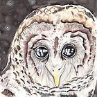 Starry Owl by Troglodyte