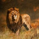 Serengeti Sunset by Tarrby