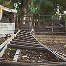 Fallen ladder by MarthaBurns