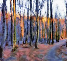 Winter Sunset In The Beech Wood by Menega  Sabidussi