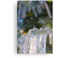 ice... Canvas Print