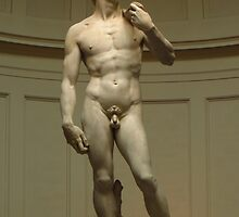 David; Michelangelo's Masterpiece by wiggyofipswich