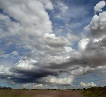 Wide Open Spaces by Sheryl Gerhard