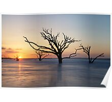 Sunrise over the trees Poster