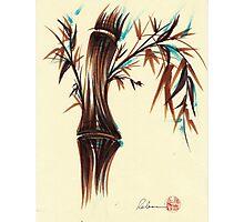 REFLECT -  Sumi-e ink brush pen Zen bamboo painting Photographic Print