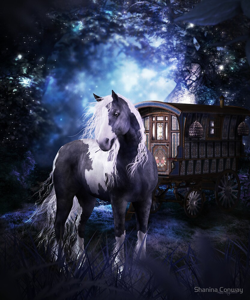 Gypsy Dreams by Shanina Conway