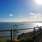 Across Torbay from Daddyhole Plain by lezvee