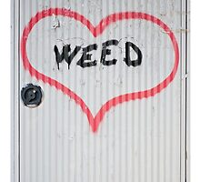 Weed Graffiti  by shelbie1972