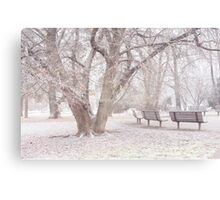 Light Walk in the Snowy Old Park Canvas Print