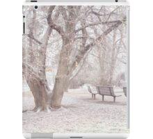 Light Walk in the Snowy Old Park iPad Case/Skin