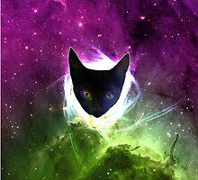 Space Cat by viggosaurus