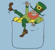 Lucky Leprechaun In My Pocket Kids Clothes