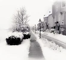 Ybbs Winter Nostalgia by Menega  Sabidussi