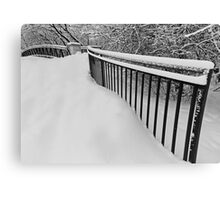 Snow Standing Fence Canvas Print