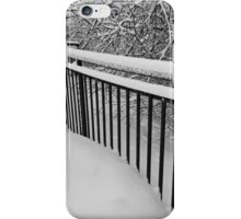 Snow Standing Fence iPhone Case/Skin