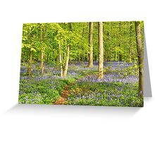 Blue forest in sunny day Greeting Card
