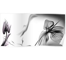 Abstract Black & White series  Poster