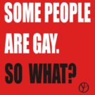 Some people are gay. So what? by Baser