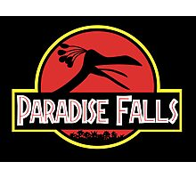 Paradise Falls Photographic Print