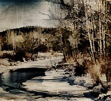 East Branch Callicoon Creek by PineSinger