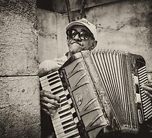 Street accordionist in Havana by Witold Skrzypiński