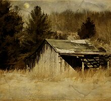 Shadows on the Barn by PineSinger