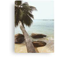 Palm Tree on Beach Canvas Print