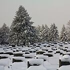 Cemetery Snow by photodug