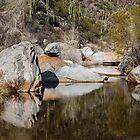 Shadows in Sabino Canyon, Tucson, Arizona by Robert Kelch, M.D.