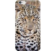African Leopard Photograph Namibia iPhone Case/Skin