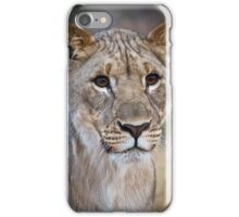 African Lion Cub Photograph Namibia iPhone Case/Skin