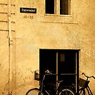 Copenhagen Bicycle Cell Case by Jonicool