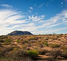 Light After Rain in the Sonoran Desert by Lee Craig