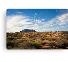Light After Rain in the Sonoran Desert Canvas Print