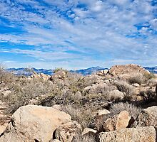 Rugged Sonoran Rocky Top by Lee Craig